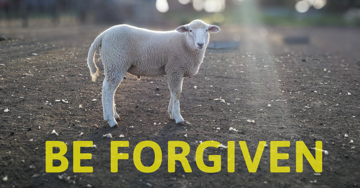 """""""He saw Jesus coming toward him, and said, 'Behold, the Lamb of God, who takes away the sin of the world!'"""" (John 1:29)"""